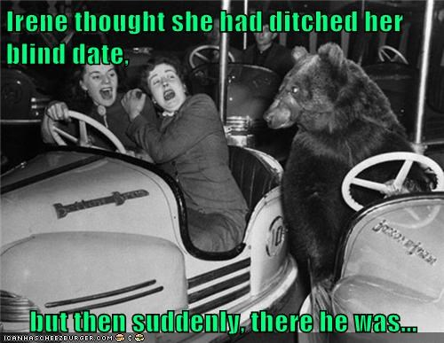bear,bumper cars,Carnival,date,fair,women