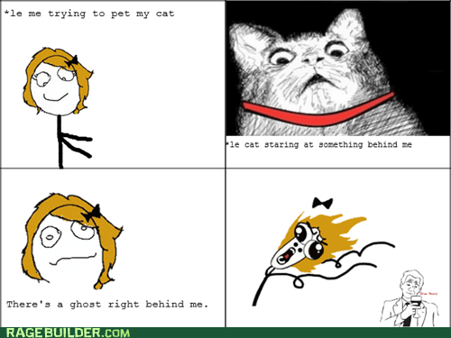 cat,ghost,omg run,Rage Comics