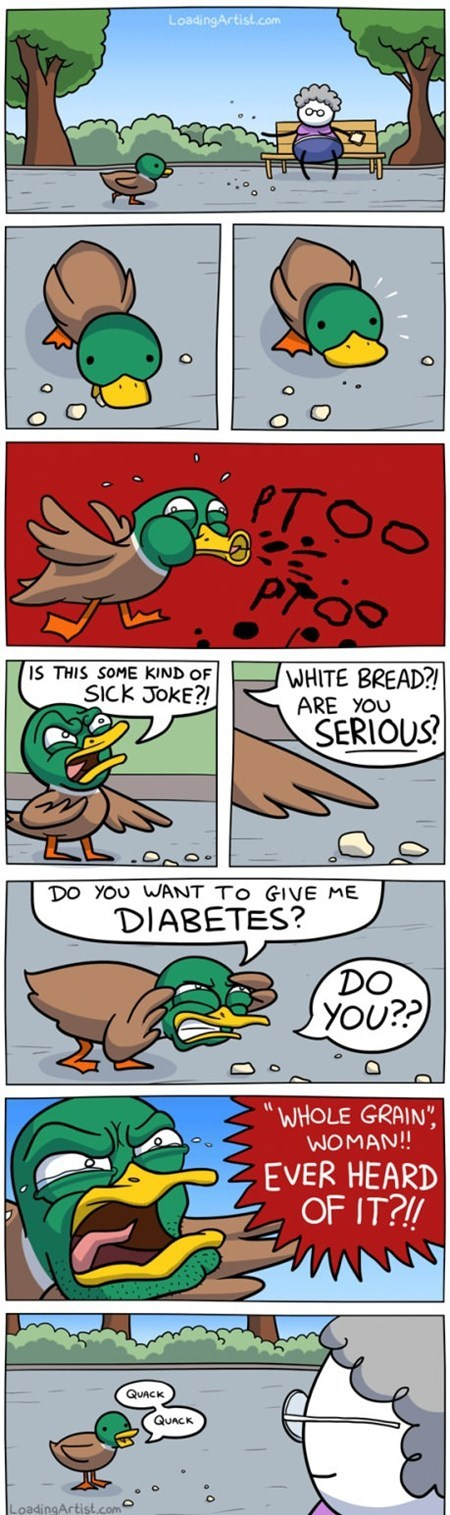 best of week bread diabeetus duck quack the internets