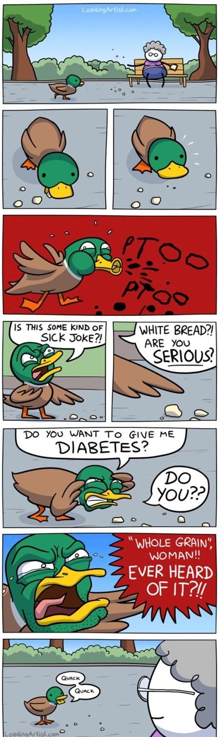best of week bread diabeetus duck quack the internets - 6285693952