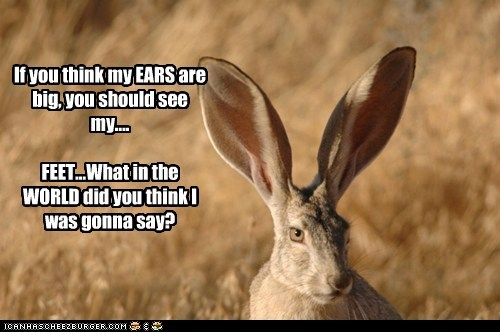 If you think my EARS are big, you should see my.... FEET...What in the WORLD did you think I was gonna say?