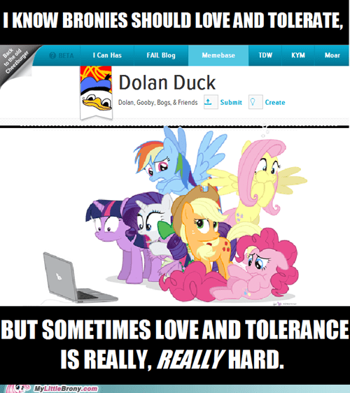 Bronies dolan duck love and tolerate memebase the internets - 6286896896