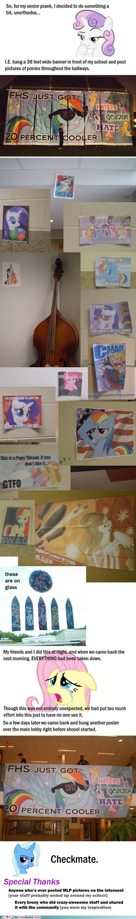 Bronies IRL ponies prank school seniors - 6287042816