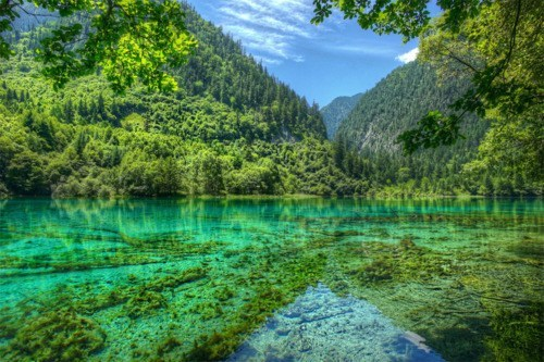 China,crystal clear water,Forest,lake,mountain