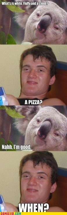 best of week,koalas,pizza,stoner,the internets