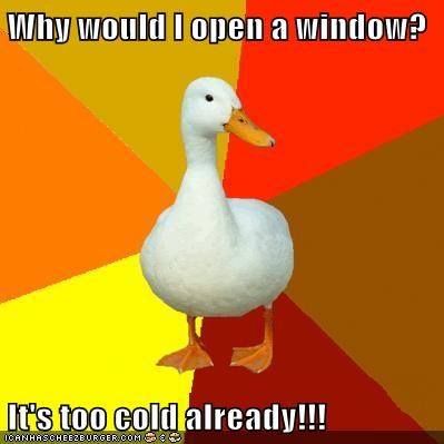 Why would I open a window?  It's too cold already!!!