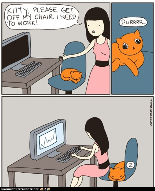 annoying cat versus human Cats chairs comic comics computers in the way