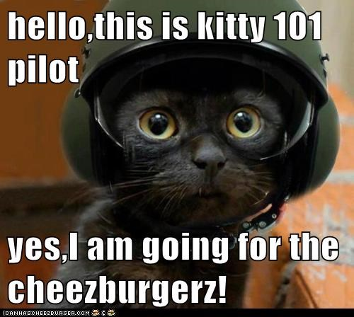 Cheezburger Image 6287356928