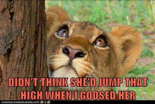 goosed jump lion tree