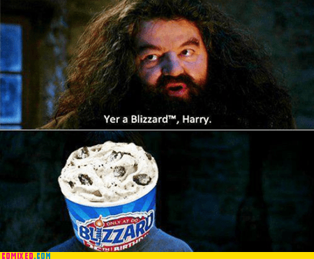 blizzard,dairy queen,From the Movies,Hagrid,Harry Potter,Movie