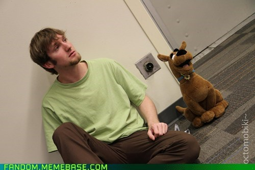 cartoons,cosplay,movies,scooby doo,shaggy