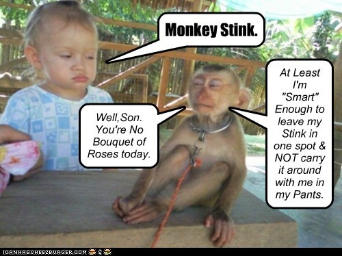 """Monkey Stink. Well,Son. You're No Bouquet of Roses today. At Least I'm """"Smart"""" Enough to leave my Stink in one spot & NOT carry it around with me in my Pants."""