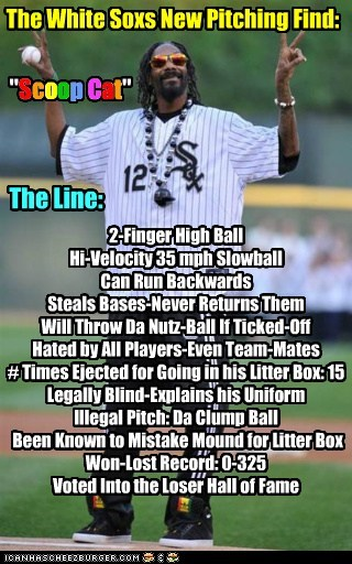 """The White Soxs New Pitching Find: """"Scoop Cat"""" The Line: S c o o p C a t 2-Finger High Ball Hi-Velocity 35 mph Slowball Can Run Backwards Steals Bases-Never Returns Them Will Throw Da Nutz-Ball If Ticked-Off Hated by All Players-Even Team-Mates # Times Ejected for Going in his Litter Box: 15 Legally Blind-Explains his Uniform Illegal Pitch: Da Clump Ball Been Known to Mistake Mound for Litter Box Won-Lost Record: 0-325 Voted Into the Loser Hall of Fame"""