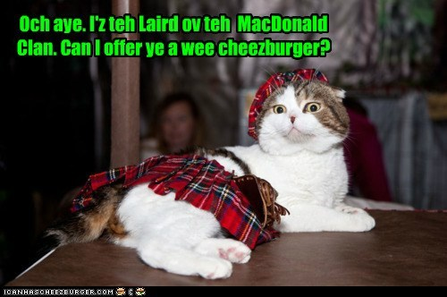 cheezburger clanl food international kilt scottish tartan - 6289130496