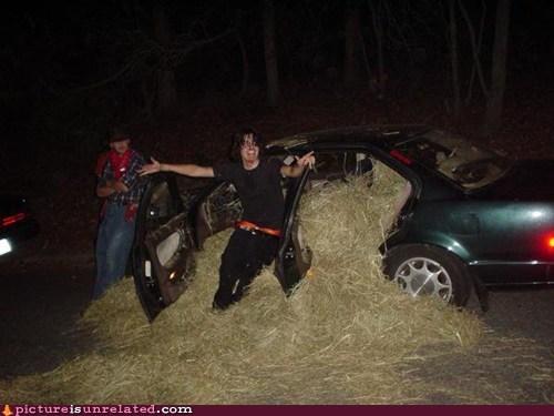 car,hay,prank,wtf