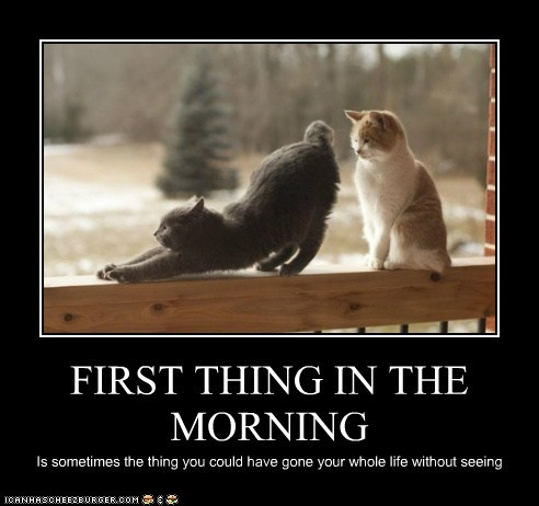 FIRST THING IN THE MORNING Is sometimes the thing you could have gone your whole life without seeing