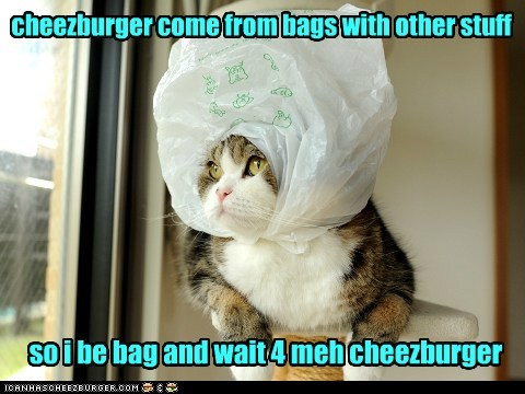 cheezburger come from bags with other stuff so i be bag and wait 4 meh cheezburger