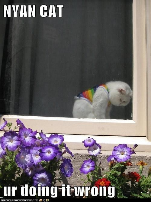 depressed,nyan,rainbow,Sad,sigh,window,youre-doing-it-wrong