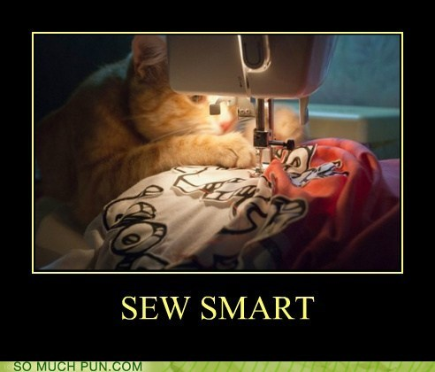 cat,homophone,phoning it in,sew,sewing,sewing machine,smart,so