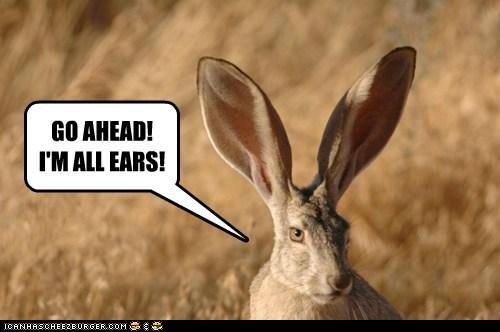 GO AHEAD! I'M ALL EARS!