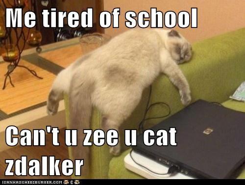 Me tired of school  Can't u zee u cat zdalker
