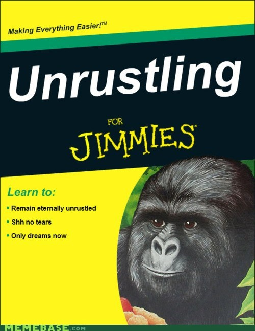 for dummies,jimmies,Memes,rustling
