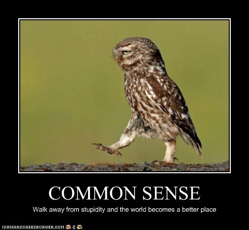 COMMON SENSE Walk away from stupidity and the world becomes a better place