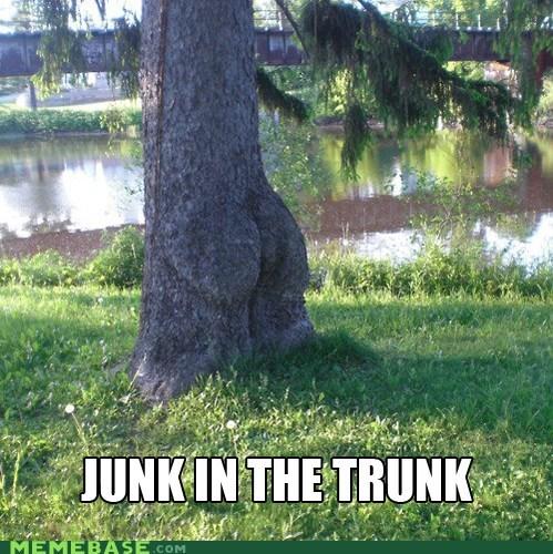 butt junk Memes nature trees trunk - 6293693696