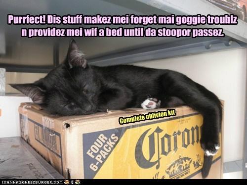 Purrfect! Dis stuff makez mei forget mai goggie troublz n providez mei wif a bed until da stoopor passez. Complete oblivion kit