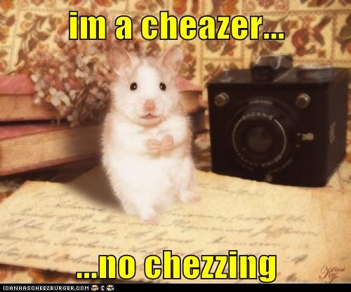Cheezburger Image 6294050048