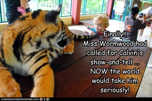 boy,calvin,hobbes,show and tell,tiger