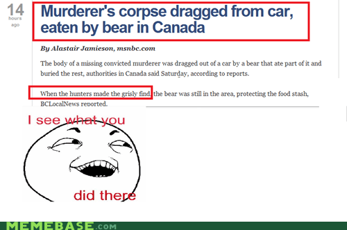 bear,Canada,corpse,grisly,grizzly,I see what you did there,Rage Comics