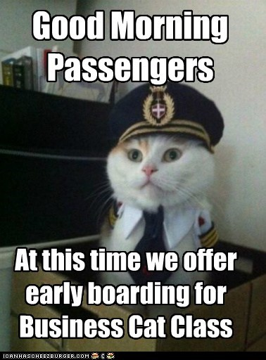 boarding Business Cat business class Captain Kitteh Cats Memes pilots planes - 6294240512