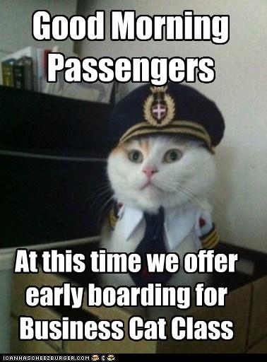 boarding Business Cat business class Captain Kitteh Cats Memes pilots planes - 6294240512