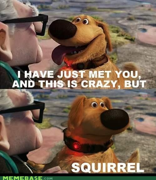 call me maybe,Dug,Memes,pixar,squirrel,up