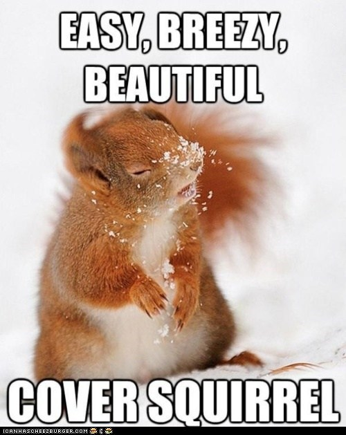cover girl,jingles,makeup,puns,snow,squirrels