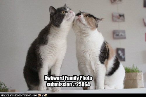 Awkward Awkward Family Photo brother brothers chin pose weird wtf - 6297170944
