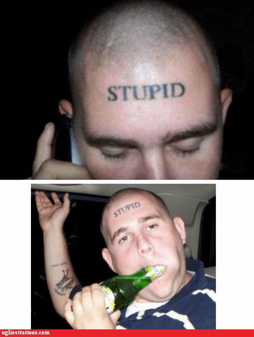 beer forehead tattoo stupid - 6297290240