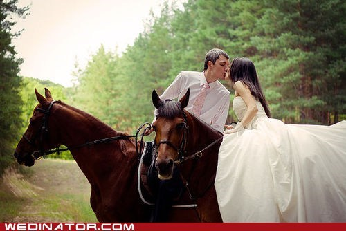 bride,funny wedding photos,groom,horses,KISS