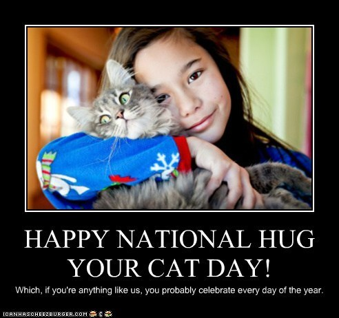 best of the week Cats holidays hugging hugs national hug your cat day silly - 6297301248
