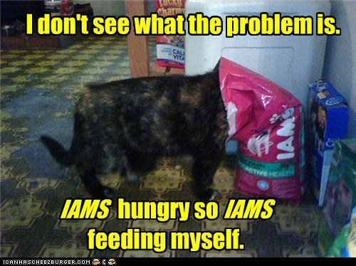cat food classic classics eat food iams noms - 6297313792
