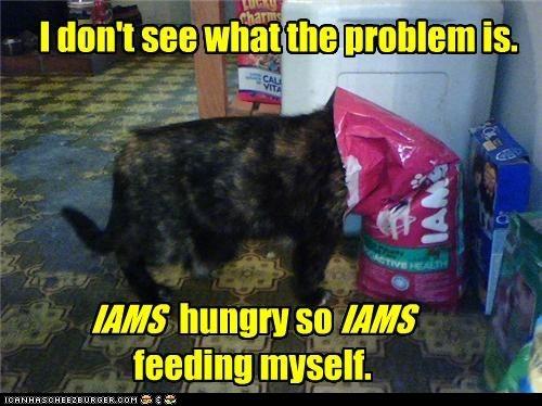 cat food classic classics eat food noms - 6297313792