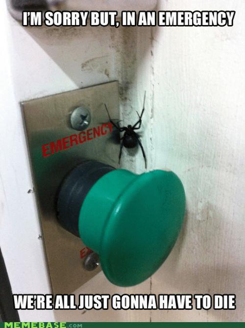 emergency,Memes,puns,spider