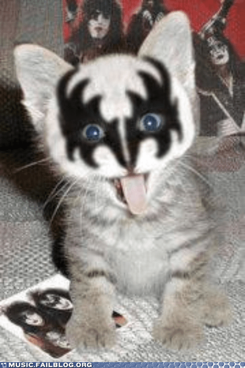 cat,glam rock,KISS