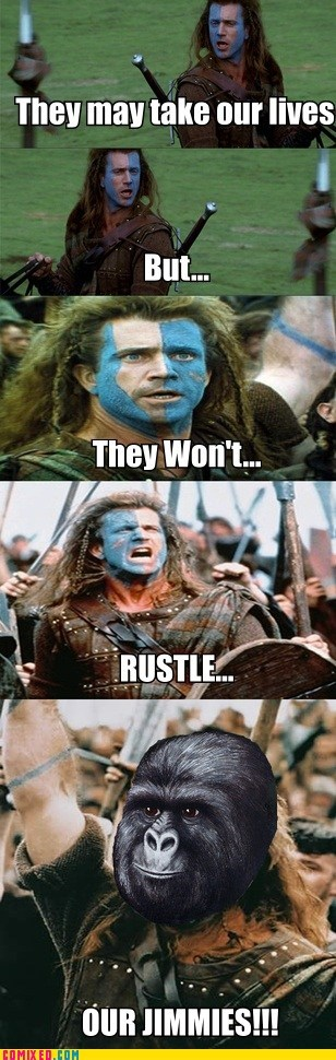brave heart From the Movies mel gibson Memes rustled your jimmies - 6298404864