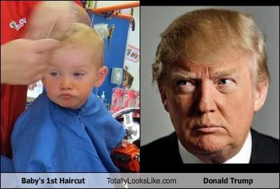 baby celeb donald trump funny hair kid TLL - 6298606848