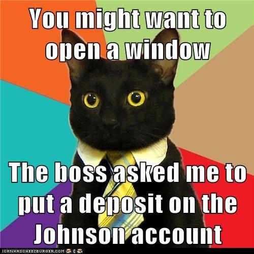 Business Cat - 6298774528