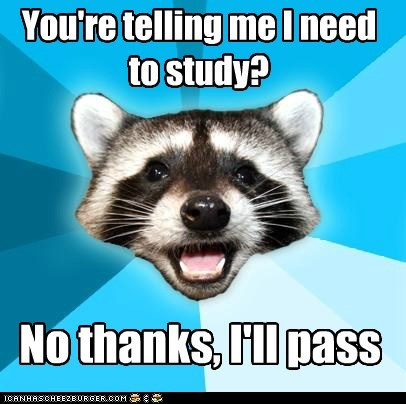 Lame Pun Coon,pass,school,study