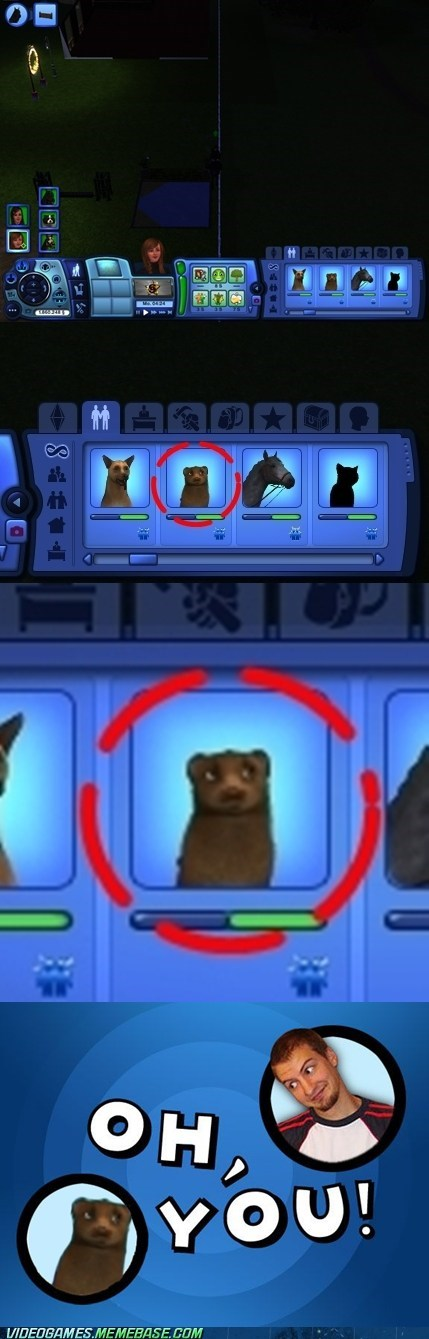animals meme oh you The Sims - 6299665664