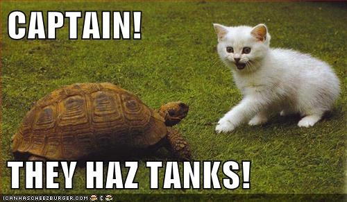 grass kitten tanks turtle - 6299768064
